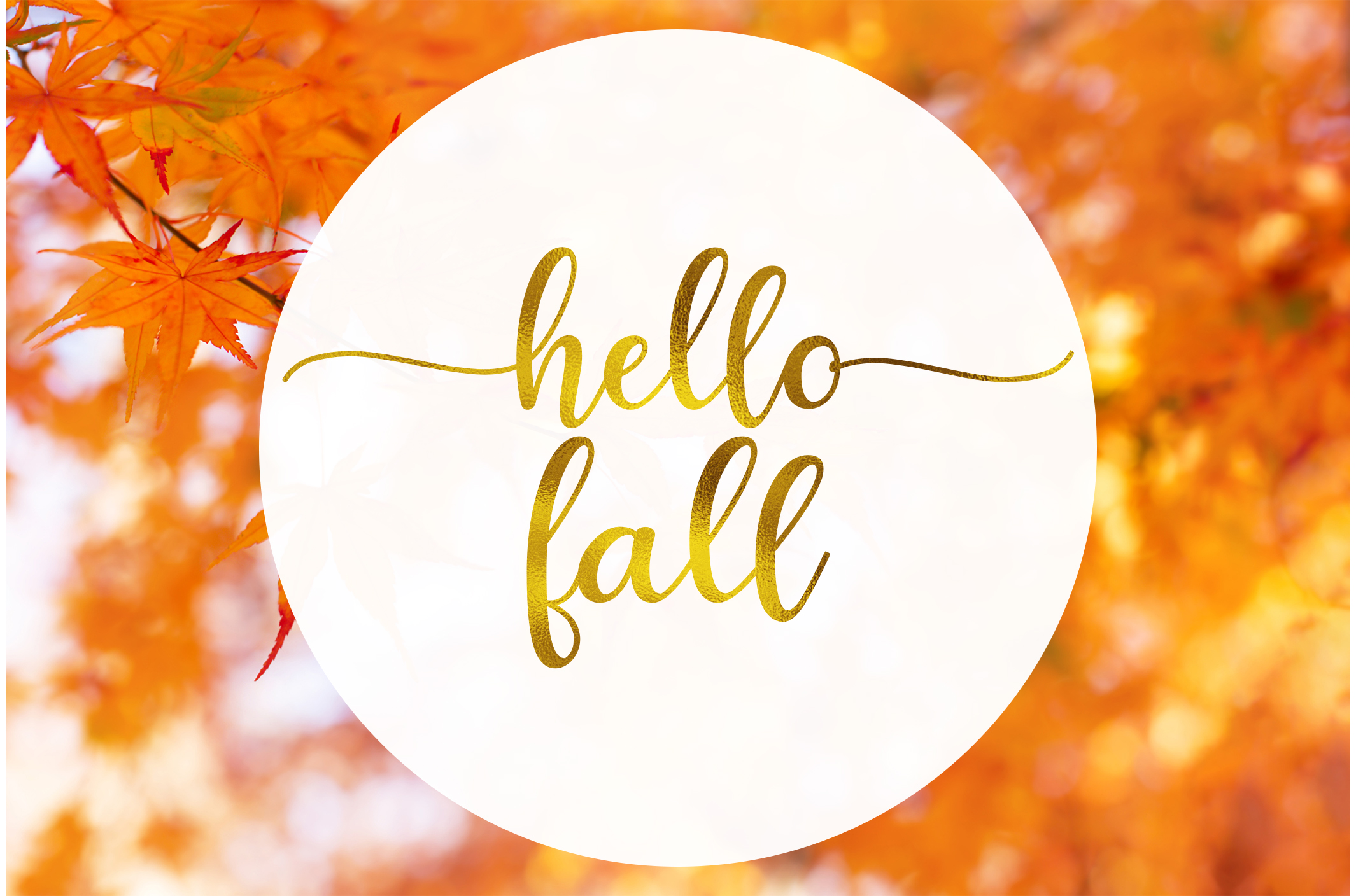 hello-fall-leaves-backgroun.jpg
